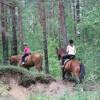 pārgājieni ar zirgiem